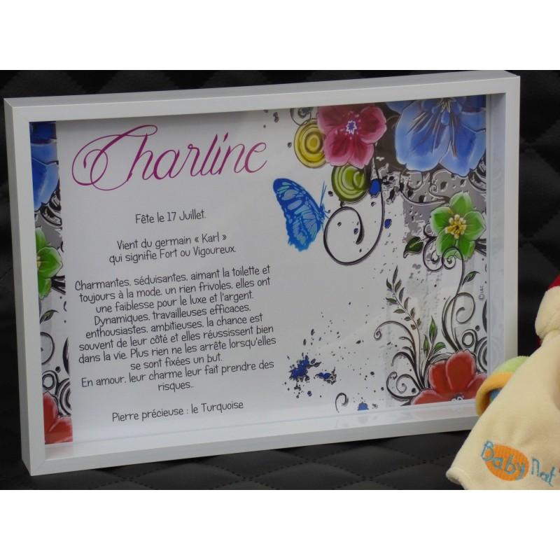 Idée cadeau personnalisé naissance noel anniversaire cadre avec signification prenom personnalisé